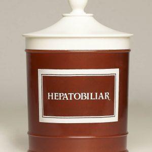 Hepatobiliar (Detoxphyton). Pl. Med. Dr. Pina